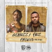 geniuzz-firewood-remix-ft-falz-art