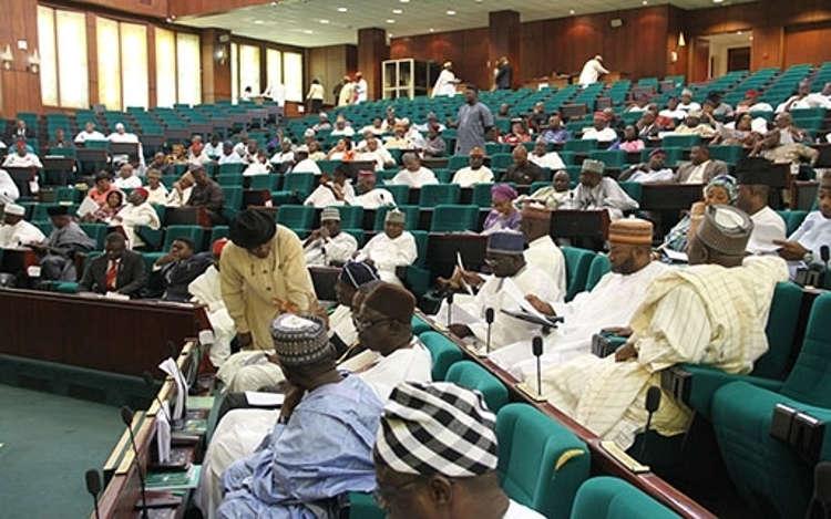 Image result for nigerian house of representatives