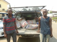 LAUTECH graduate arrested for stealing 20 bags of cement  Photo: RRS