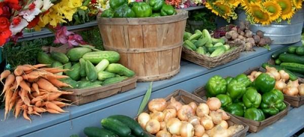 Food stuff [Photo Credit] grace communication foundation