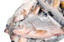 Fish heads, fish bones