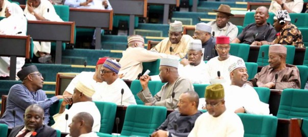 House of Reps [Photo: Twitter - @HouseNGR]