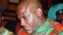 Nnamdi Kanu [Photo: TODAY.ng]