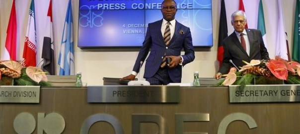 Minister of State for Petroleum Resources, Ibe Kachikwu during the 168th OPEC meeting in Vienna [Photo credit: The Iran Project]