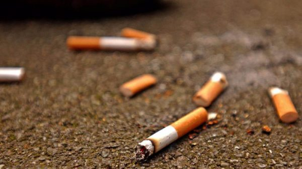 The UN health agency warned that tobacco's killer toxins also wreak havoc on the environment. [Photo: ITV.com]