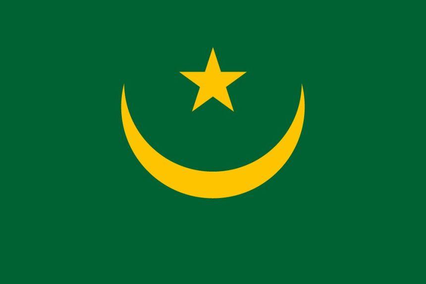 Mauritania flag [Photo: country flags]