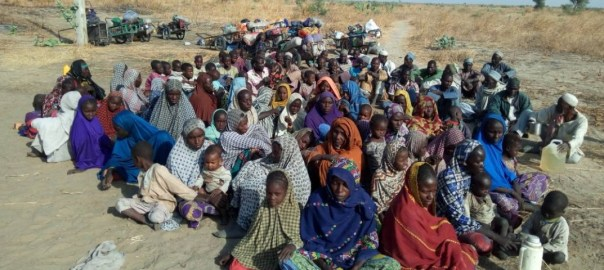Persons arrested by the Nigerian army who are either Boko Haram fighters or members of their families hiding on the islands of the Lake Chad.