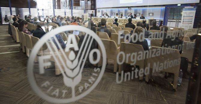 Food and Agriculture Organisation (FOA). [Photo credit: Opportunity Desk]