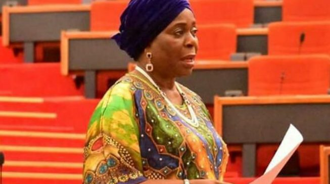 Senate's Deputy Minority Whip, Biodun Olujimi. [Photo credit: TheCable]