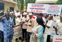 Workers of Energy Commission of Nigeria (ECN) protest