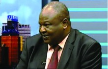 Ayo Teriba, Vice Chairman, Technical Committee of the National Council on Privatisation