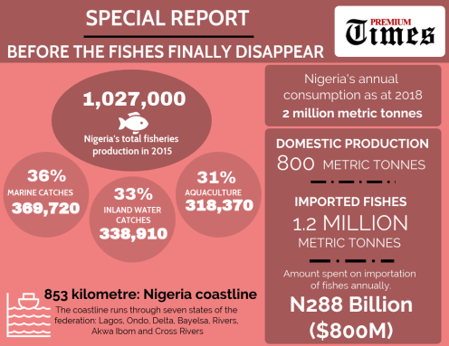 SPECIAL REPORT: With Nigeria's fishes disappearing amid govt neglect, nation spend billions on importation. [CREDIT: George Kaduna]