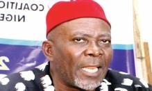 Uche Okwukwu [Photo: Punch Newspapers]