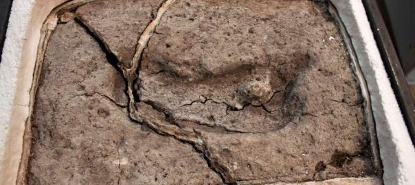 Researchers say the pictured ancient footprint dates back at least 15,600 years, which they say makes it the oldest human footprint ever found in the Americas. (Universidad Austral de Chile, Laboratorio de Sitio Pilauco/Karen Moreno, Juan Enrique Bostelma (Photo Credit: VOA News)