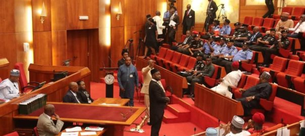 IGP Mohammed Adamu at the Senate plenary today