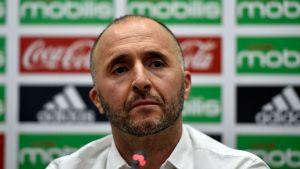 Djamel Belmadi [Photo: YahooNews]
