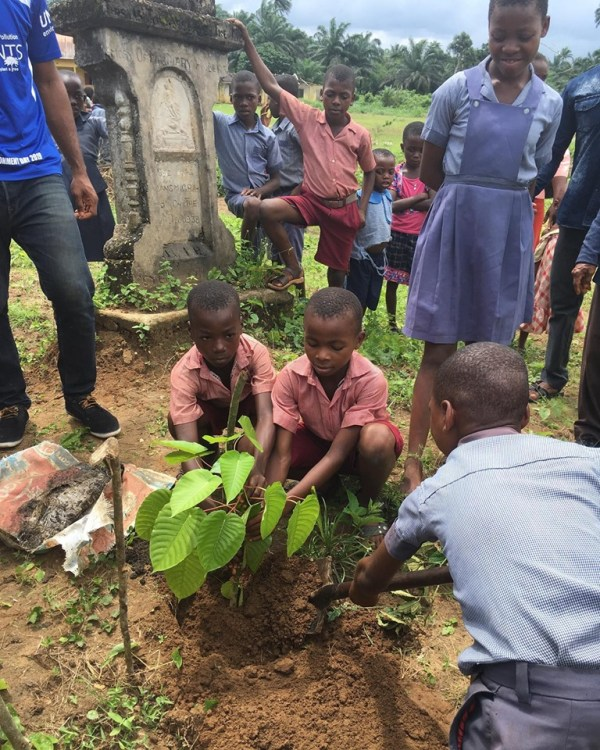 The pupils planting tree