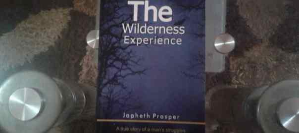 The Wilderness Experience by Japhet Prosper