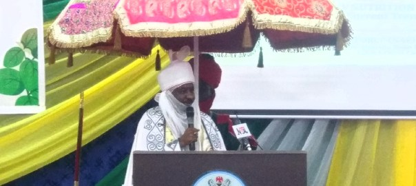 Sanusi addressing the participants at the conference