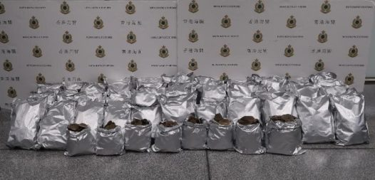These are the 110 kilograms of pangolin scales wrapped in tin foil that the women tried to smuggle through Hong Kong to Macau. © Hong Kong Customs and Excise Department