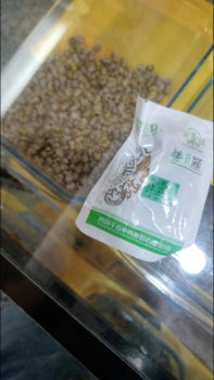 In another pharmacy in Shantou, pangolin scales are sold for more than 7,000 renminbi