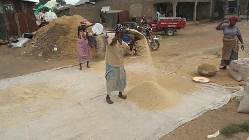 Air filter of rice