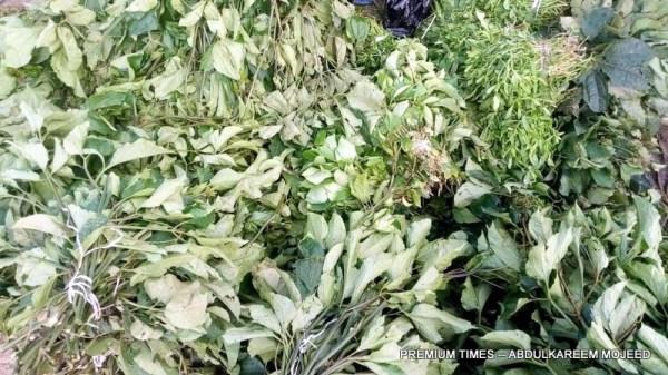 Ugu Leaves
