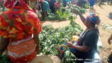 Mrs Victoria Uzo Selling Ugu at Karimo Market.