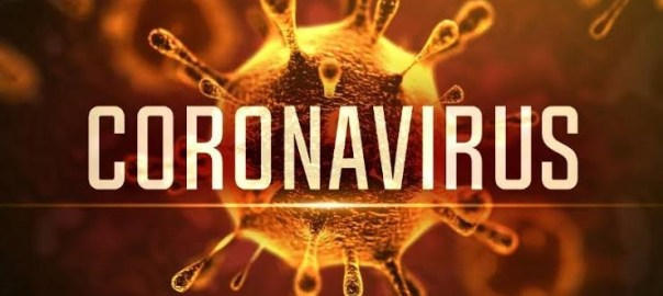 Coronavirus (Photo Credit: Medscape)
