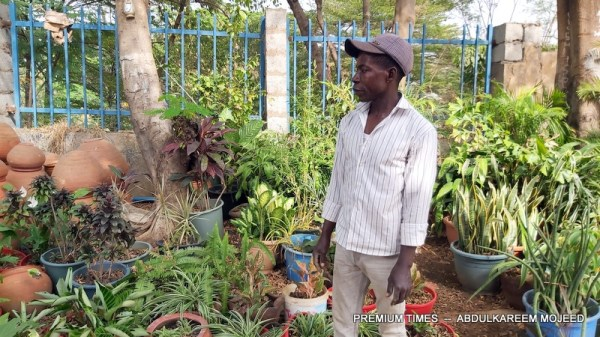 David Onyedikachi