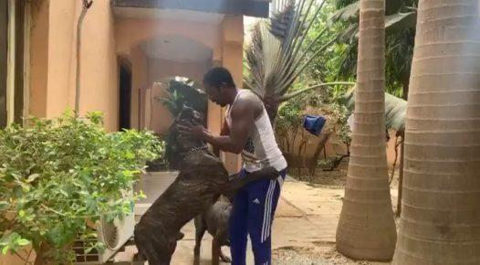 Zaharaddeen Sani abd his Dog