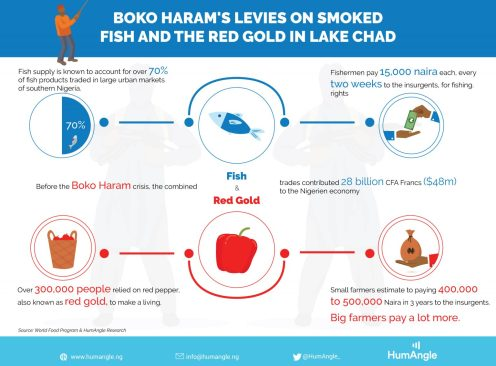 Boko Haram's levies on smoked fish and the red gold in Lake Chad