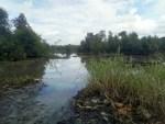Ifiekporo River