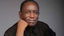 Nigerian writer, Dillibie Onyeama [Photo credit: BBC]