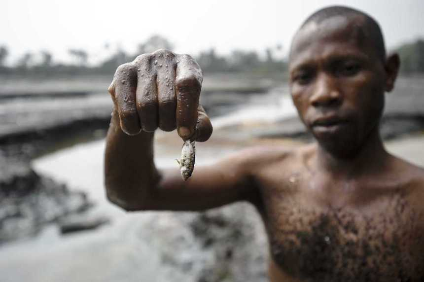 A fisher presents his meagre catch from a polluted creek in Ogoniland, Nigeria. [Photo: The Conversation]