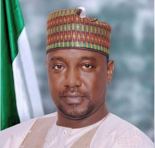 Niger governor tests positive for COVID-19