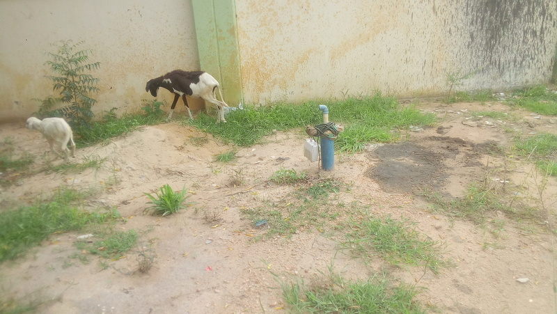 Drilled borehole that never supply water