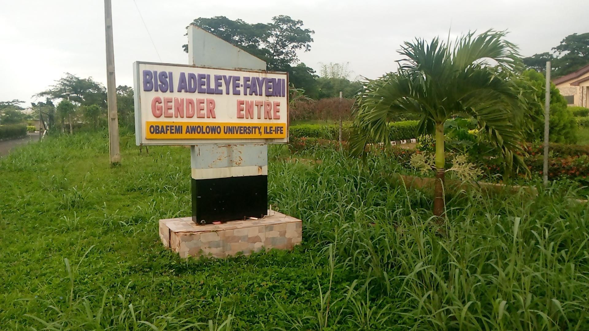 OAU gender centre