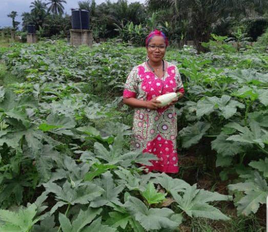 Dunmola Sodeke, the CEO of Omodun farms