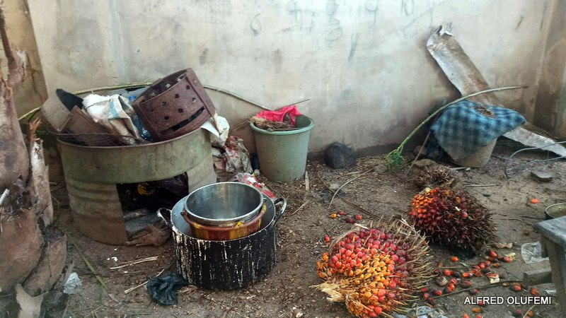 Palm kernel in Babaniyi's compound