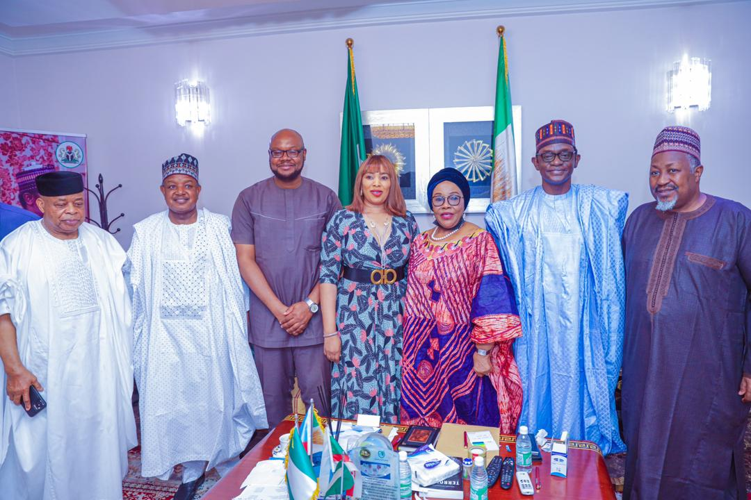 Joy Emordi being welcome to APC
