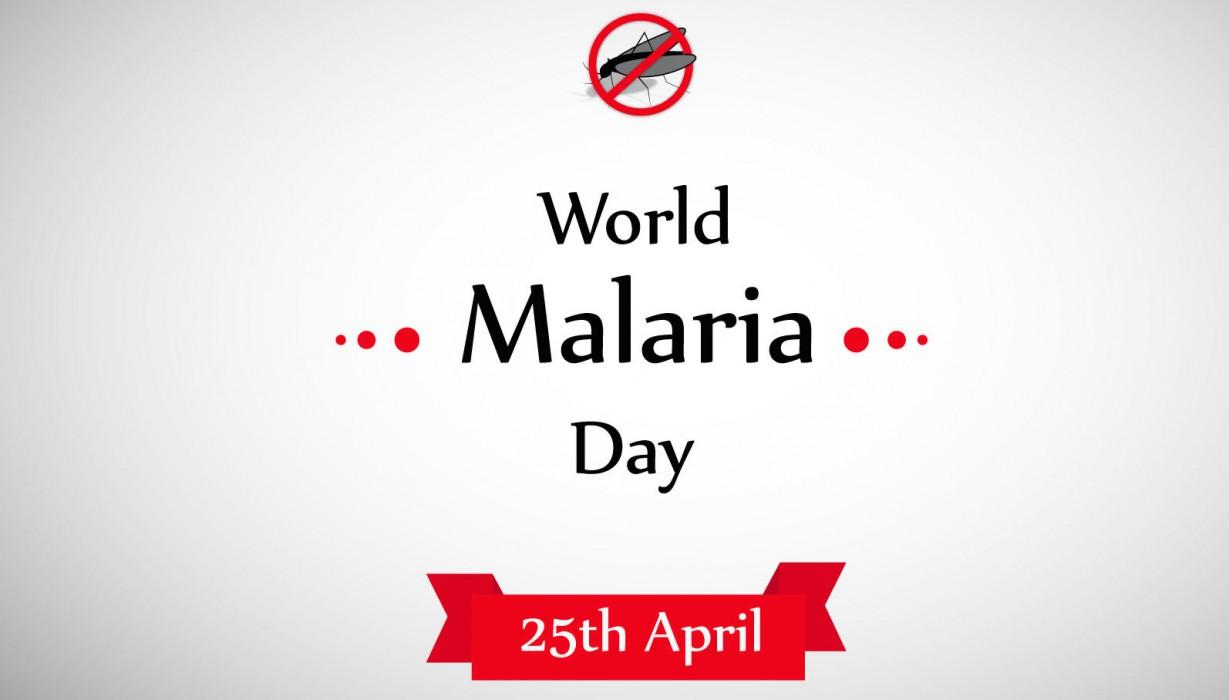 Image result for national malaria elimination programme nigeria