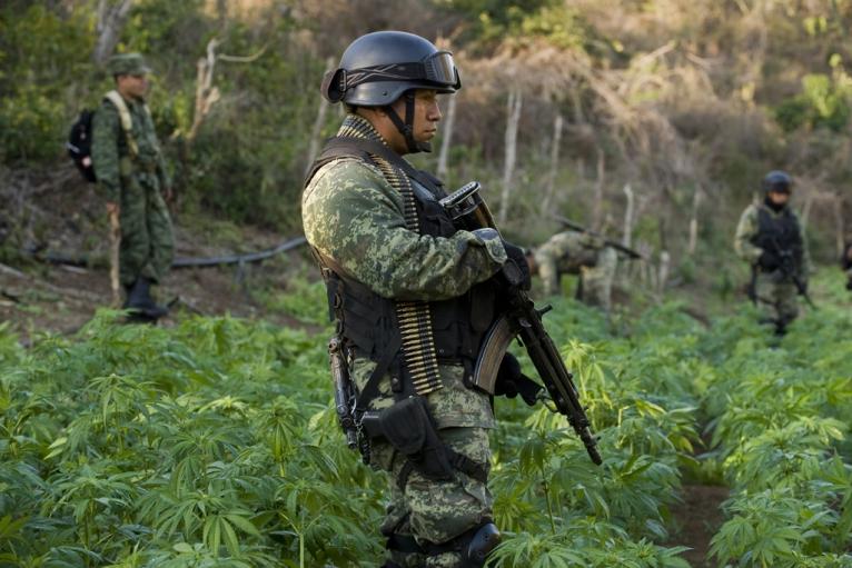 How the Sinaloa cartel won Mexico's drug war | Public ...