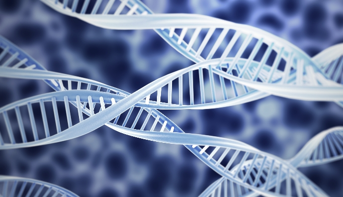 Image result for Gene discovery could yield to new treatments of Diabetes