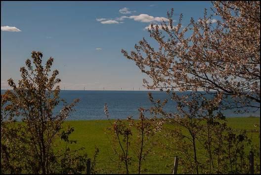 Här ligger det vindmöllor ute till havs.