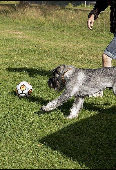 Den fotbollen höll inte länge.