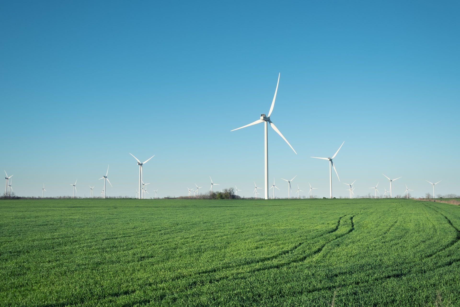 green energy energie verde