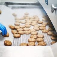 Scandia Food-produse congelate