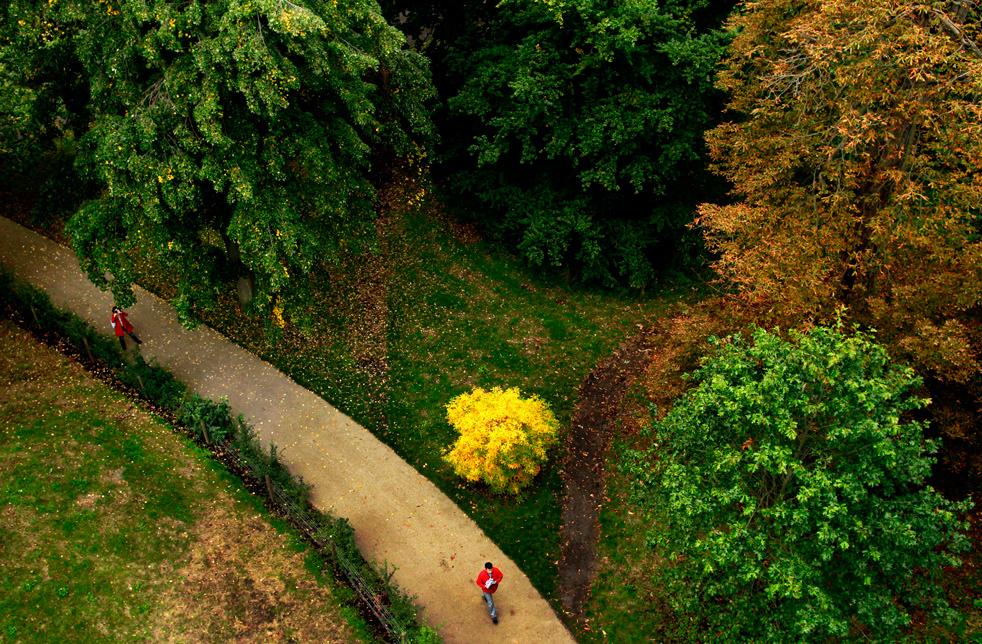 fall_color_13.jpg