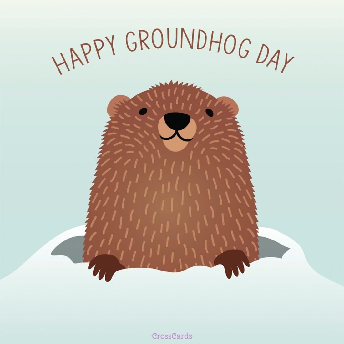 Free Happy Groundhog Day 2 2 Ecard